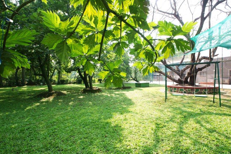 Enormous Garden area