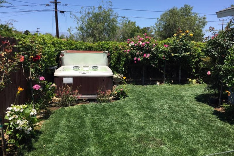 Shared Backyard with Jacuzzi, Weber Stainless BBQ, Patio Table, roses, Passionfruit vine, Peach, Avocado, Lemon, Lime and Orange Trees..