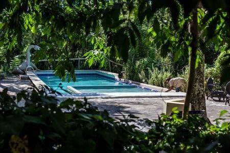 piscina de agua de manantial completo con dragón de agua y piscina para niños