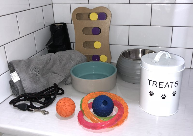 Fun and essentials for the fur kids