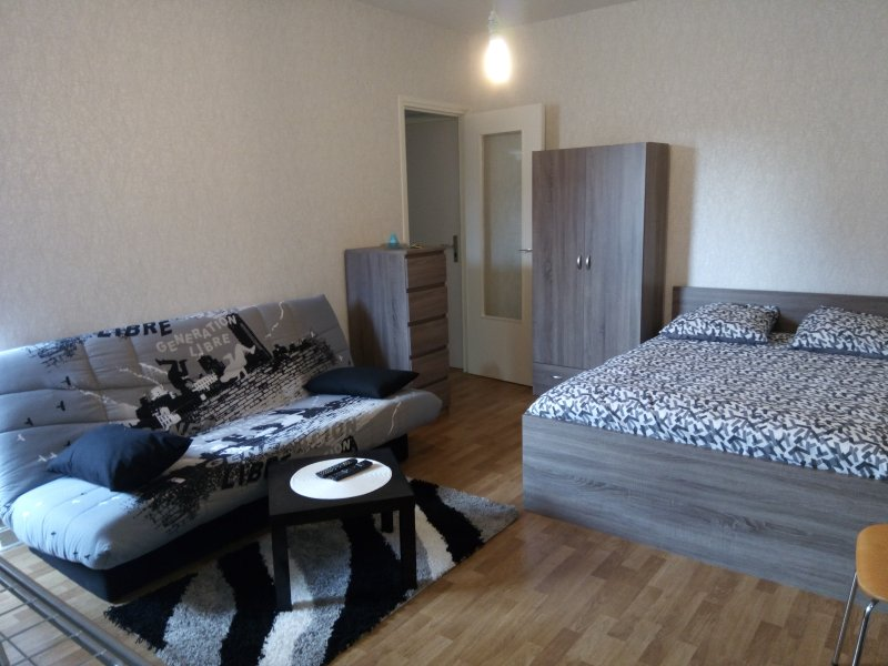 Appartement centre ville-parking-wifi, vakantiewoning in Magny-Cours