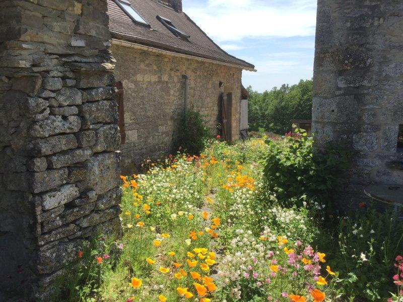 Garden behind the gites