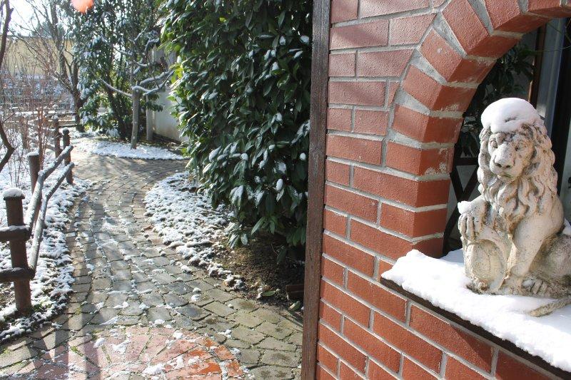 Michaels Nest in Winter