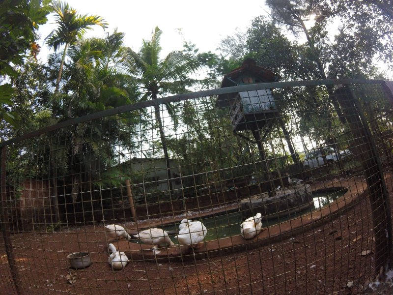 Ramanant Village Resorts, vakantiewoning in Sindhudurg District
