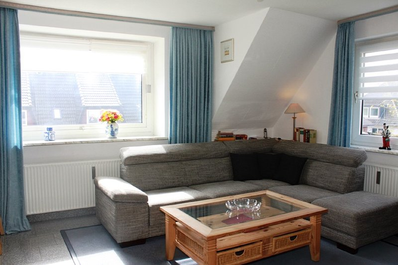 living room with sofa bed in whg, 4 on the 1st floor.