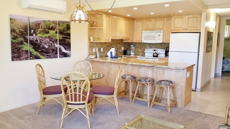 Beautifully Remodeled throughout with AC in each room