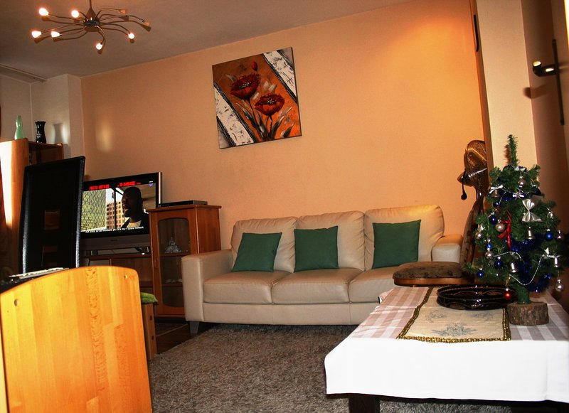 Spacious apartment, sleeps 4., vacation rental in Bucharest