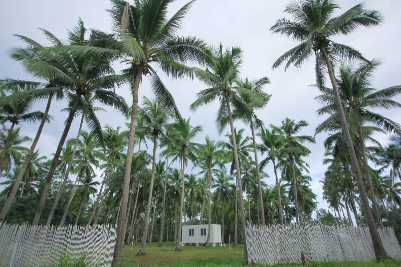 ★ Container home ★ Near Beach ★ Aircon and Firepit, alquiler vacacional en Palawan