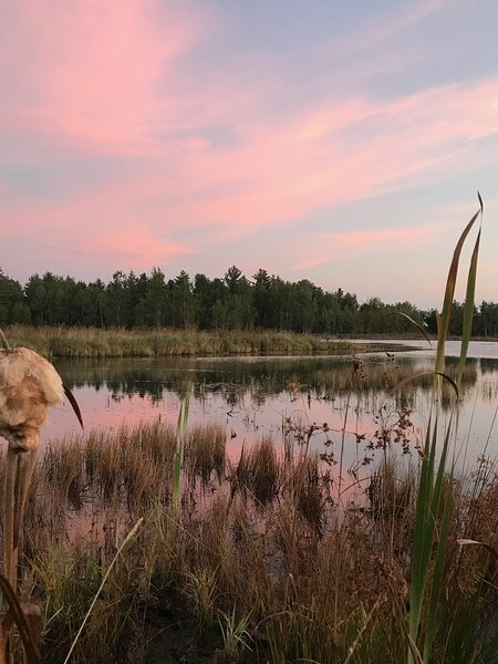 10 Ponds with walking trails
