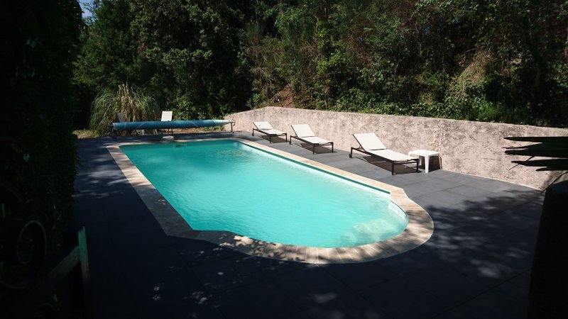 Spacious villa with swimming-pool, holiday rental in Signes