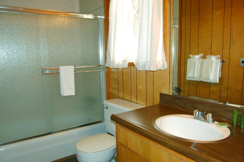 Full bathroom, different view with shower/tub combo