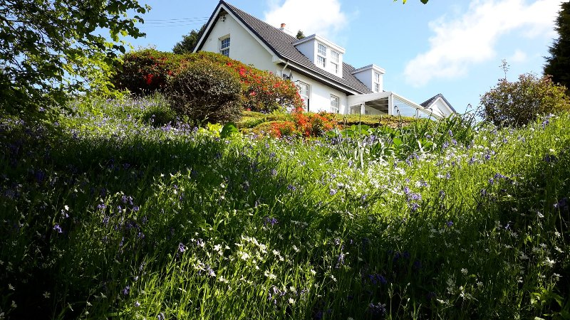 Looking up to the cottage from lower down in the garden