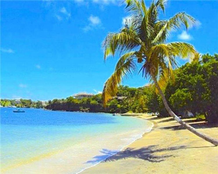 Lovers Lane - Grenada