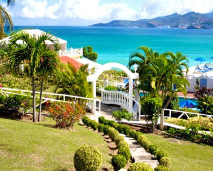 Flamboyant - Grenada