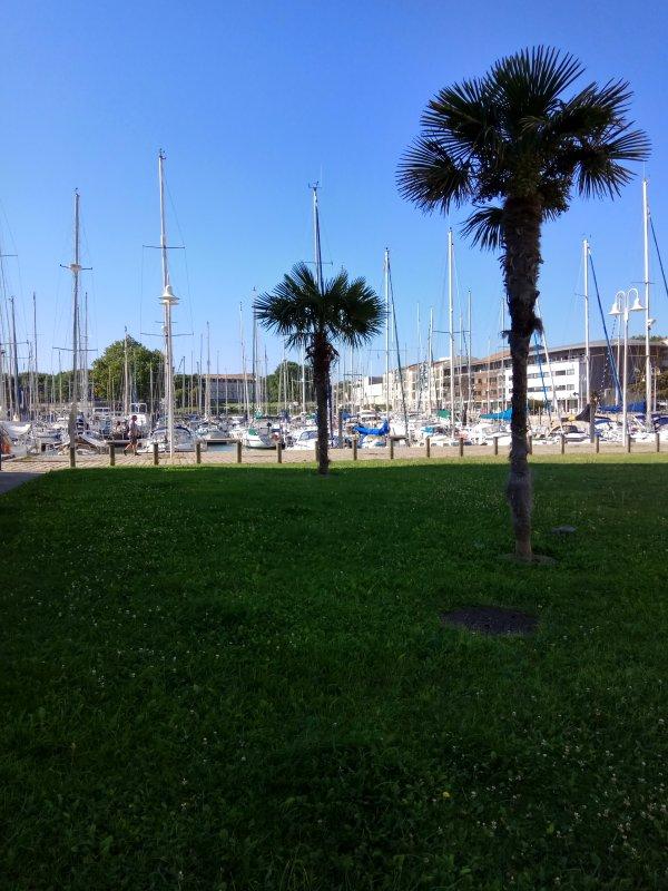 Studio port de plaisance rochefort oc an tripadvisor rochefort location de vacances - Port de plaisance de rochefort ...