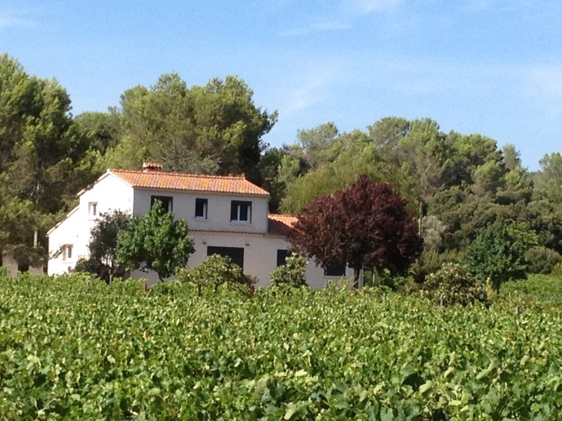 Maison Loubiere, holiday rental in Pignans
