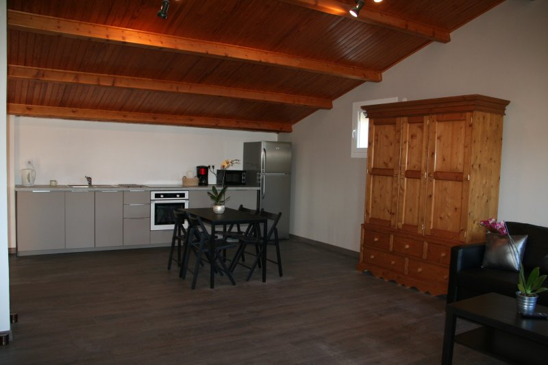 APPARTEMENT T2 LOUBIERE, holiday rental in Pignans