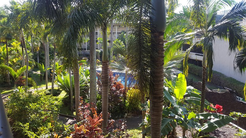 Hidden Gem of Kauai South Shore, vacation rental in Kalaheo
