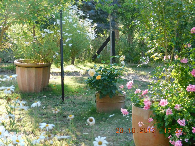 Détendez-vous dans les jardins privés.
