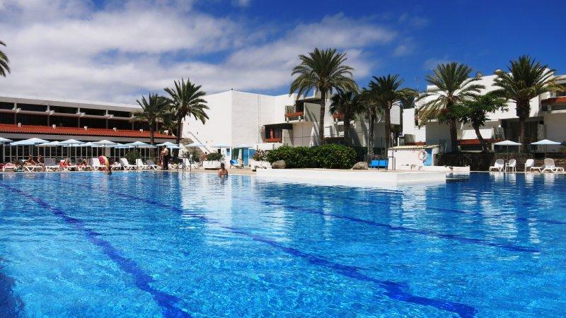 Apartment Primavera in Costa del Silencio, holiday rental in Las Rosas
