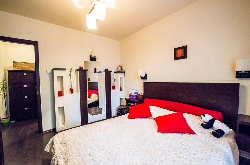 Yoa Apartment Brasov, holiday rental in Sanpetru