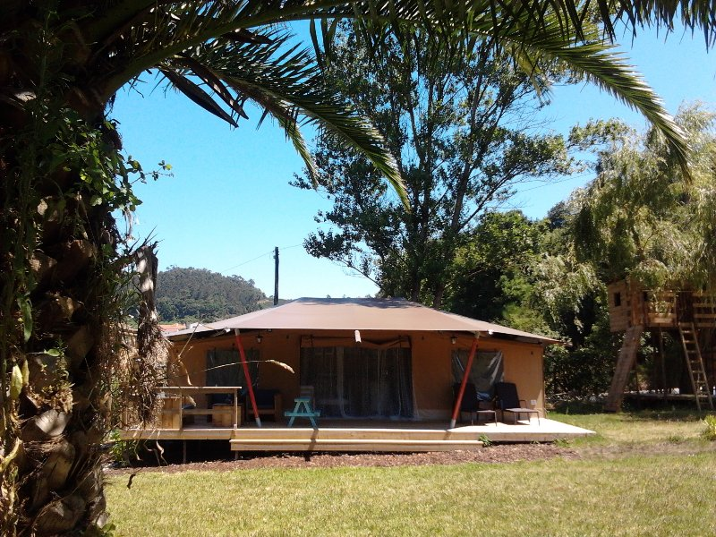 Front view of our luxury bedouin lodge tent. Overlooking the garden with a large palmtree.