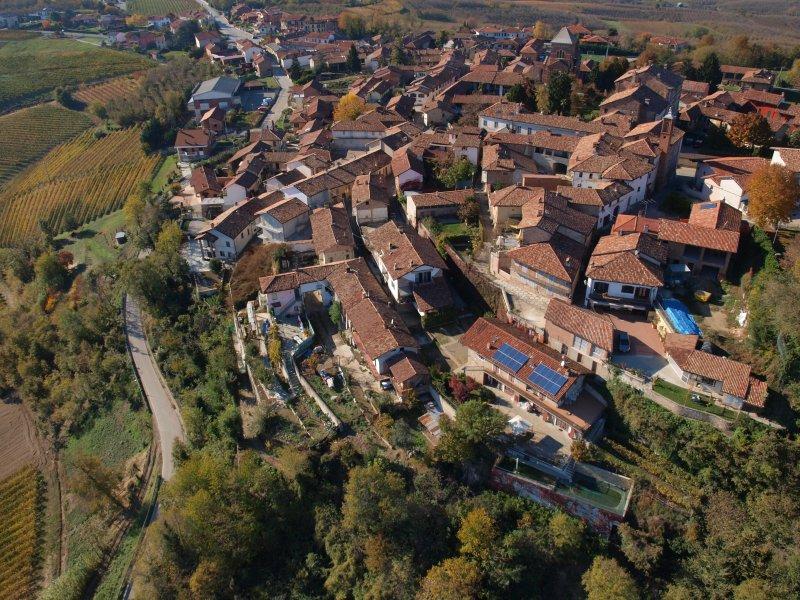 La Vigna del Parroco ' Brown', vacation rental in Verduno
