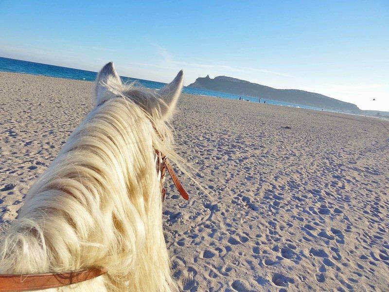 Paardrijden langs het strand van Poetto