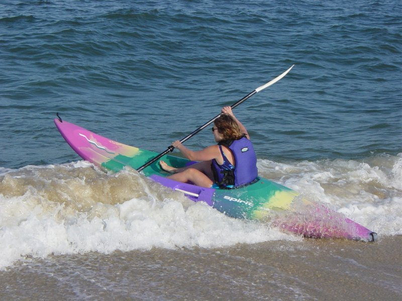 kayak avec les dauphins de la plage en face de l'appartement - ils se rapprochent ici ...