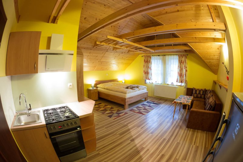 Apartment with kitchen in Penzion Zet, holiday rental in Lubovnianske Kupele