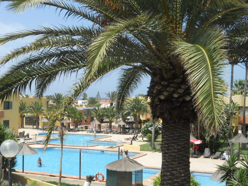 IBISCO -  Lovely Apartment with Pool-view, holiday rental in Corralejo