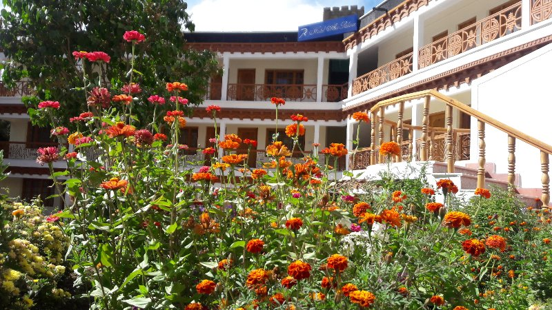 Ladakh City Tours, holiday rental in Leh