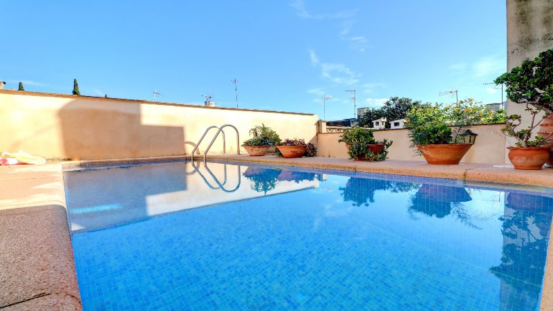 Cozy house swimming pool available all year updated - Summer house with swimming pool review ...