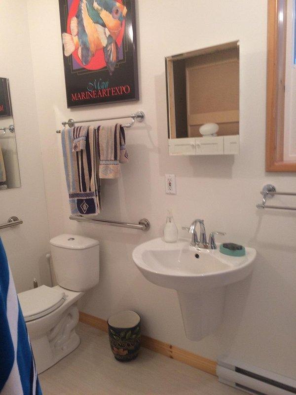 Newly Renovation Main Floor Bathroom