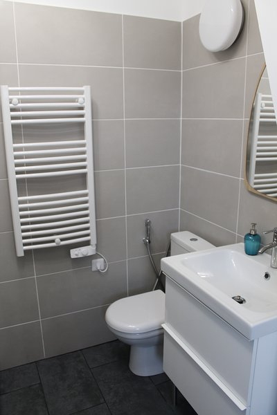 Shower room with toilet equipped with a hygienic shower