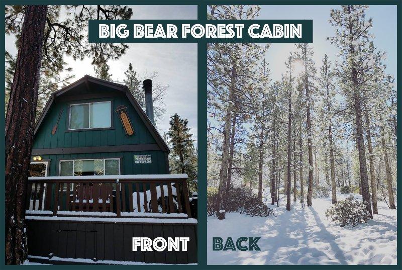 Big Bear Waldkabine