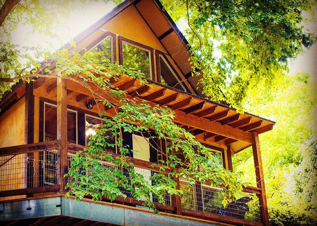 Fall Special! Gorgeous Cabin on River Road by Guadalupe River w/ blue ribbon!, aluguéis de temporada em New Braunfels