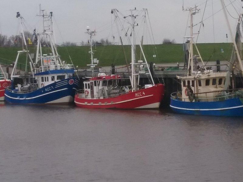 Nuestro puerto pesquero en Dornumersiel