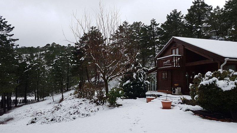 Huset på vintern
