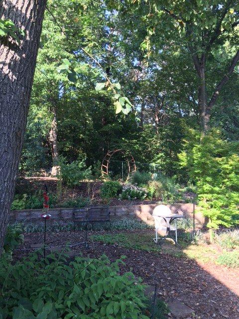 Garten und Eingang zum Waldgebiet.