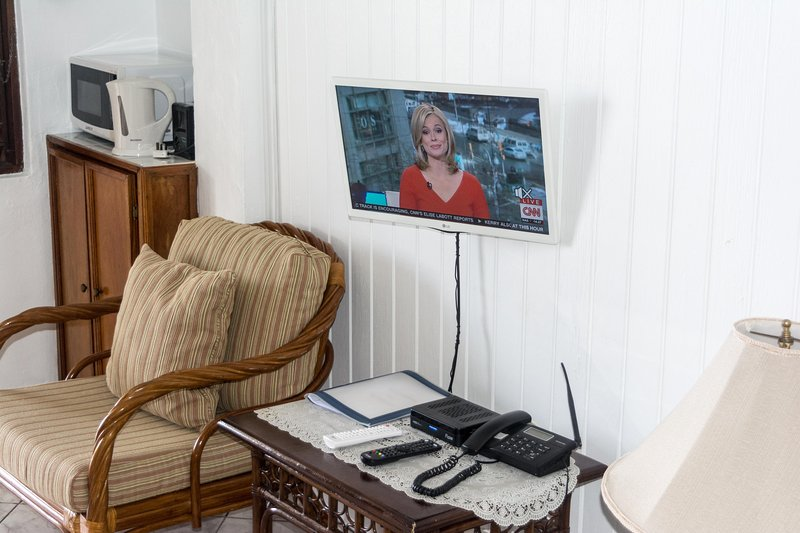 TV with private Netflix account