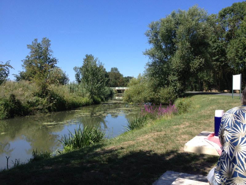 Picknickplaats in de buurt van de rivier