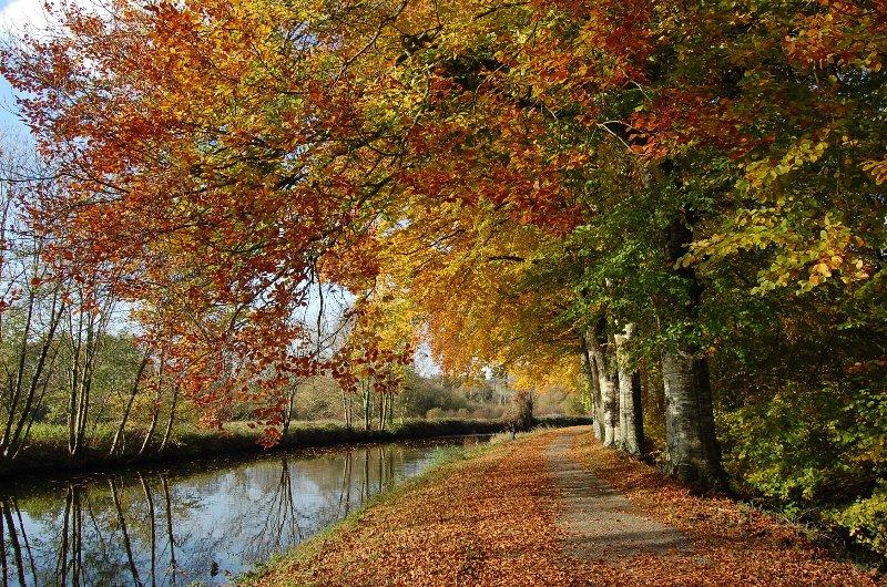 El precioso canal de Brest-Nantes es tan gloriosa en otoño