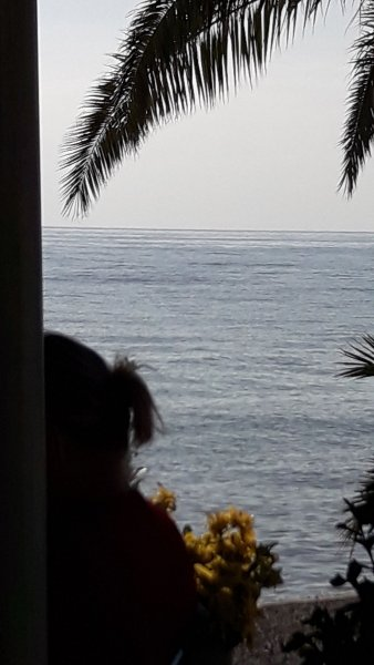altea playa
