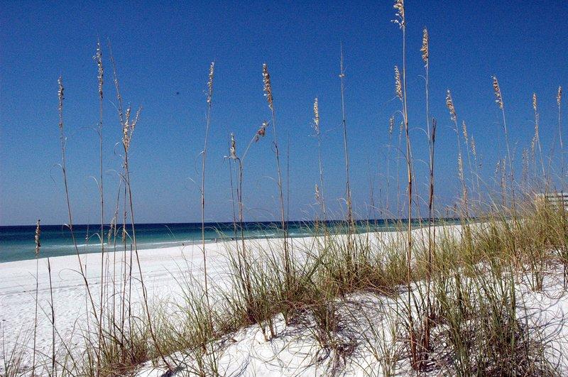 Sugar sand beaches and emerald waters, beautiful!