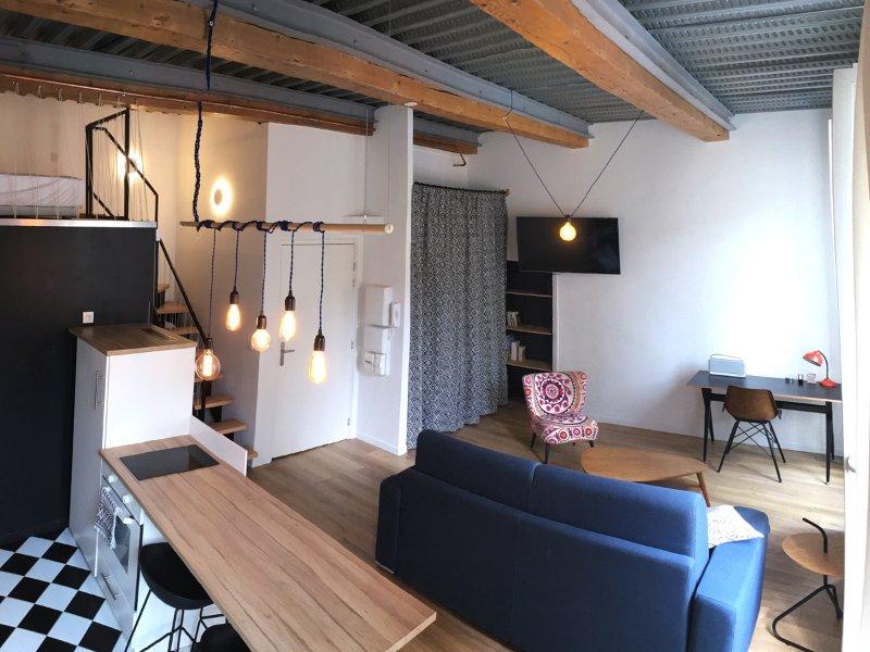 Loft design avec sa cuisine américaine, son salon et son coin nuit !