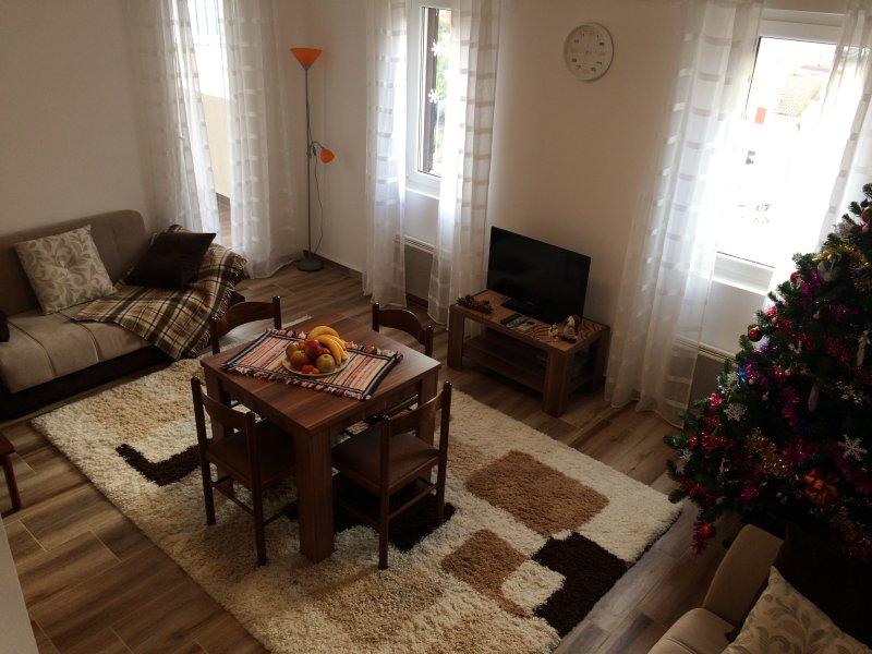 YOY apartments - 2, holiday rental in Njegusi