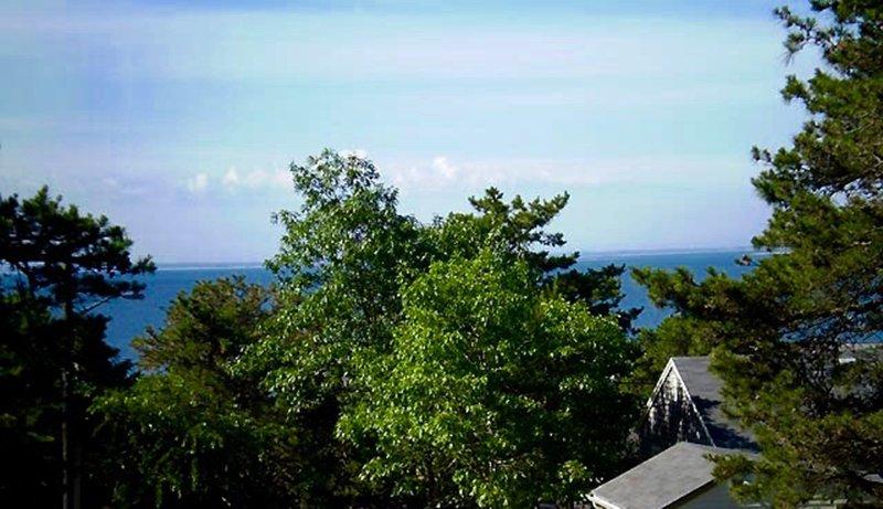 Vista do Wellfleet Harbor- curta distância