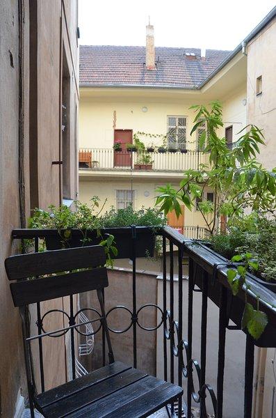 Balcony with fresh herbs
