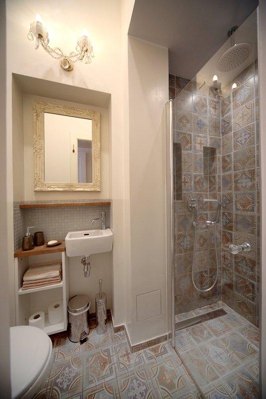 Small but full bathroom in entryway